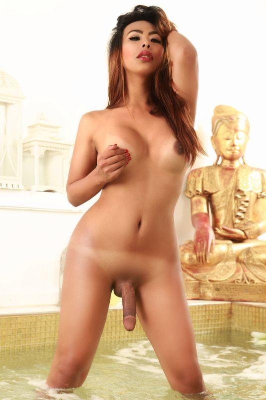 www escort trans asiatiche